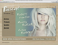 Chicago Salon & Spa Studio Branding Design