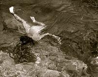 Nadando en el Rio Frio de Ayutla, Queretaro