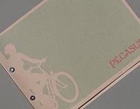 Pegasus Cycles Branding & Catalog