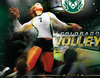 Colorado State 2013 Volleyball Schedule Poster