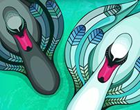Swan illustrations