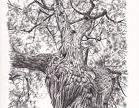 Tree Pendrawing