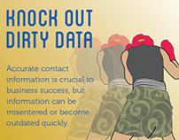 Experian QAS  data management Infographic