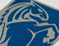 ABS Fund - Logo Design + Web Site Design