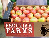 Branding for Sustainable Farm