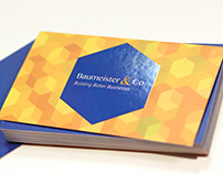 Baumeister Silk Business Cards