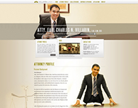 Villarin Law Website