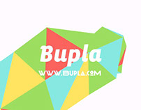 Montage Bupla 2013