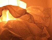 paper petal explorations