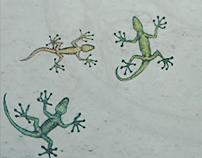 Lizard Study 2, 1993-1994