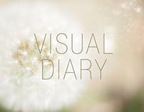 -Visual Dairy-