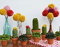 Plush Plants | Felt Succulents and Cacti