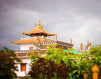 Buddha Temple - Dehradun