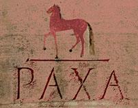 wine labels for italian winery PAXA