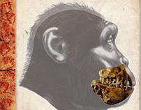 Australopithecus anamensis - KO 136 (Book Project)