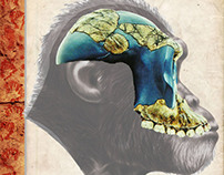 Australopithecus garhi (Book Project)