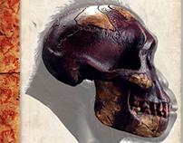 "Australopithecus afarensis -  ""Lucy"" (Book Project)"