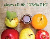 Hunza Organic Honey