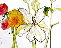 Floral Watercolours