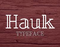 Hauk - Typeface