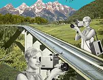 käferbahn - collage