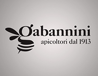 Gabannini identity