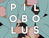 Pilobolus Poster