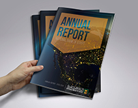 National Bank of Egypt - Annual report
