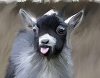 A Goat Named Francis