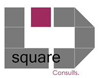 """D Square Consults"" logo"