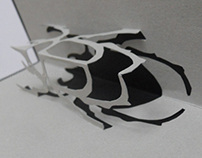 Insects Pop-up Book