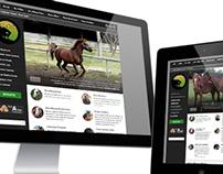 Equamore Foundation | Website | Theme Customization