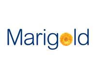 Marigold Branding - Reckitt Benckiser