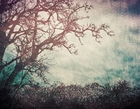 Vintage Trees... Artworks