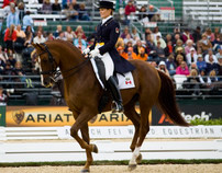 2010 World Equestrian Games images