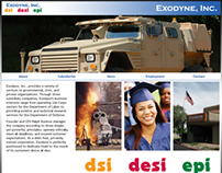 Exodyne/DSI/DESI - Web Design