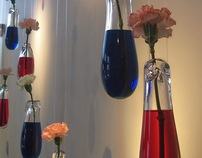 Assimilation: Suspended Blown Glass