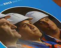 Orion Annual Report 2013