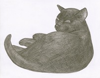Kuba. My Black Cat - pencil drawing
