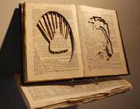 Altered Book Installation