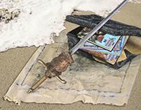 California Treasures Campaign Materials