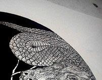 CrocSnake - Study