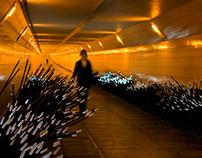 DUNE Maastunnel by Daan Roosegaarde