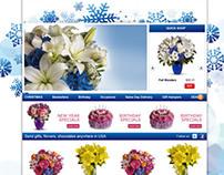 Website Skins