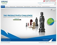Spring Singapore: Productivity Challenge