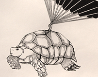 Gustav: The Grumpy Parachuting Tortoise