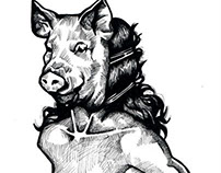 Musa La Porcina
