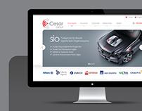 Cesar Website Design 2