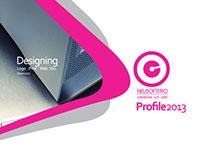 Neusoftpro Profile 2013