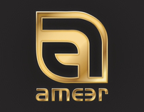 Ameer Visual Identity Design